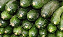 15 zucchine